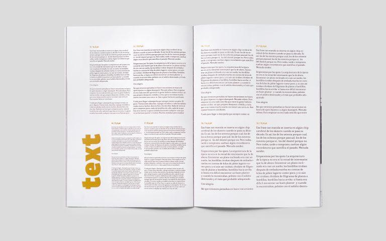 Disseny-tipografia-interior3-Delmar